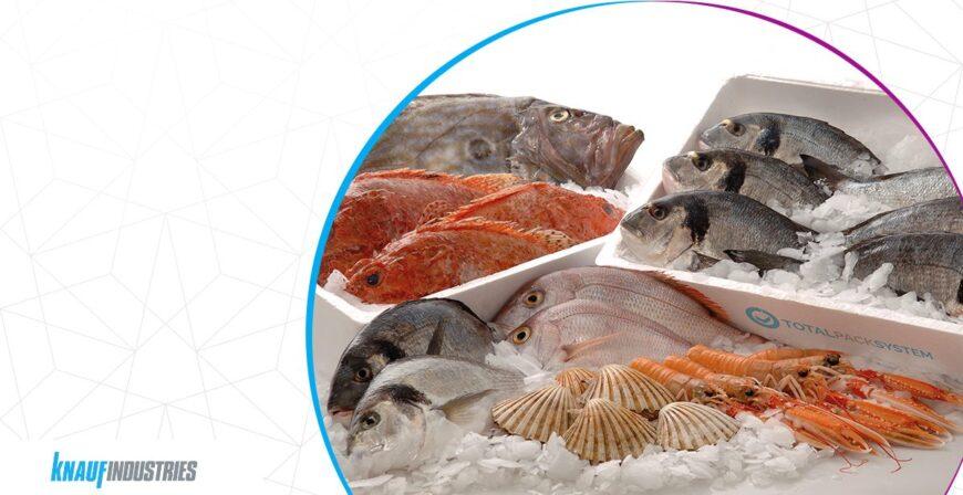 Transport ryb: 5 zalet pudełek termicznych z EPS